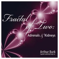 Fractal of Two: Adrenals and Kidneys